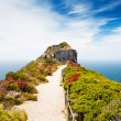 Cape point, south africa - Stock Photo