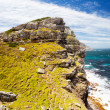Scenery of cape of good hope — Stock Photo