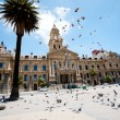 Pigeons flying over city hall of cape town — Stock Photo #10470145
