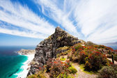 Cape point, south africa — Stock Photo