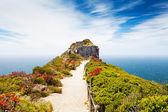 Cape point, güney afrika — Stok fotoğraf