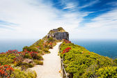 Cape point, south africa — Stok fotoğraf