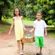 Kids carrying basket of apple — Stock Photo