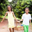 Two kids carrying a basket of apple — Stock Photo
