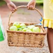 Royalty-Free Stock Photo: Children carrying basket of apple
