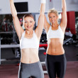 Two fitness women working out in gym — Stock Photo #10678774