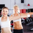 Fitness woman in gym - Stock Photo
