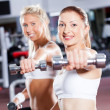 Fitness woman doing workout - Foto Stock