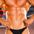 Stock Photo: Male bodybuilder