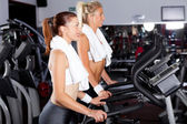 Fitness women working out in gym — Stock Photo