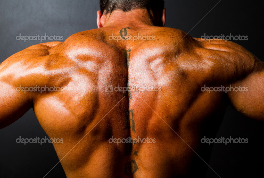Muscular bodybuilder's back on black background — Stock Photo #10679646