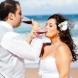 Newlywed couple drinking champagne — Foto Stock