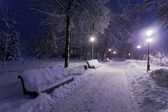 Park covered with snow at night. — Stock Photo