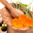 Alternative Medicine - Calendula Officinalis — Stock Photo #10247654