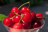 Fresh Cherries — Stock Photo