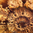 Detail Of Antique Ceiling — Stock Photo #9579336