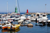 Boats In The Small Port Of Giglio Island — Stock Photo