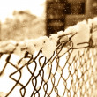 Snow on a wire mesh fence — Stock Photo