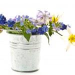 Spring bouquet — Stock Photo