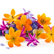 Spring bouquet — Stock Photo #10176843