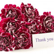 Beautiful bouquet of carnations - Stock Photo
