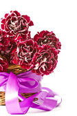 Beautiful bouquet of carnations — Stock Photo
