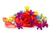Red rose with flowers hyacinth — Stock Photo