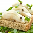 Herring and black bread and onions — Stock Photo