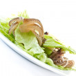 Salad with boiled octopus — Stock Photo #10586801