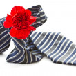 Stock Photo: Men's tie with red carnation