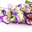 Lisianthus — Stock Photo #7975906