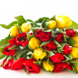 Red and yellow tulip flowers — Stock Photo