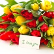 Red and yellow tulip flowers — Stock Photo #8047510