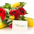 Red and yellow tulip flowers — Stock Photo #8066056