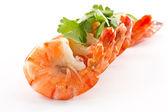 Shrimp — Stock Photo