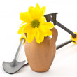 Stock Photo: Tools for the garden