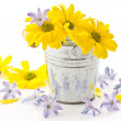 Royalty-Free Stock Photo: Flowers yellow chrysanthemums and blue hyacinth