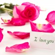 Beautiful red rose and rose petals — Stock Photo #9390844