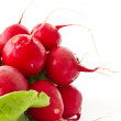 Bunch of fresh red radishes — Stock Photo