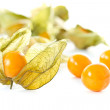 Stock Photo: Physalis