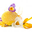 Stock Photo: Egg and bright crocuses