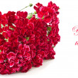 Bouquet of red carnations — Stock Photo