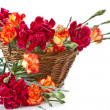 Stock Photo: Bright bouquet of carnations in basket