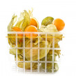 Physalis - Stock Photo