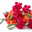 ストック写真: Bouquet of red carnations