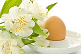 Boiled egg and a white flower alstromerii — Stock Photo