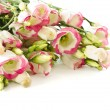 Bouquet of pink flowers lisianthus — Stock Photo