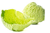 Fresh cabbage early — Stock Photo