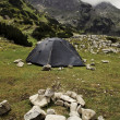 Tent into the wild - Stock Photo