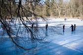 Tarde congelada — Foto Stock